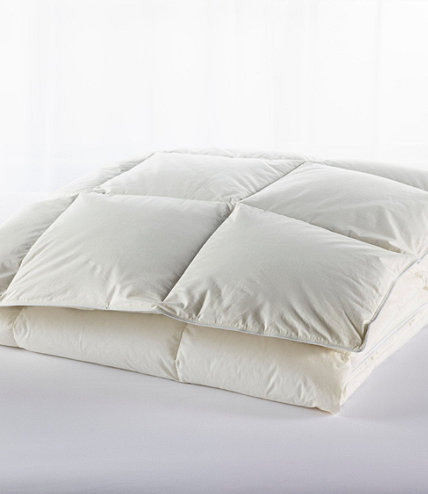 Box Stitch Goose Down Comforter Warm L L Bean