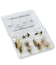 Life Cycle Fly Selection, Stone Fly