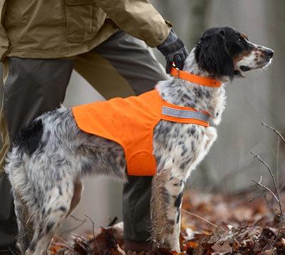 Dog Hunting Vests Dog Safety Vest