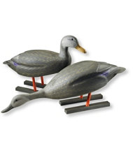 100th Anniversary Collector's Edition Coastal Decoy Set