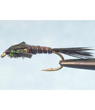 Pheasant Tail 2 Pack