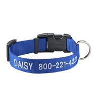 Personalized Pet Collar